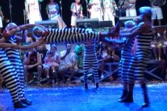 XII Baile de Gala no Circo Voador 2014